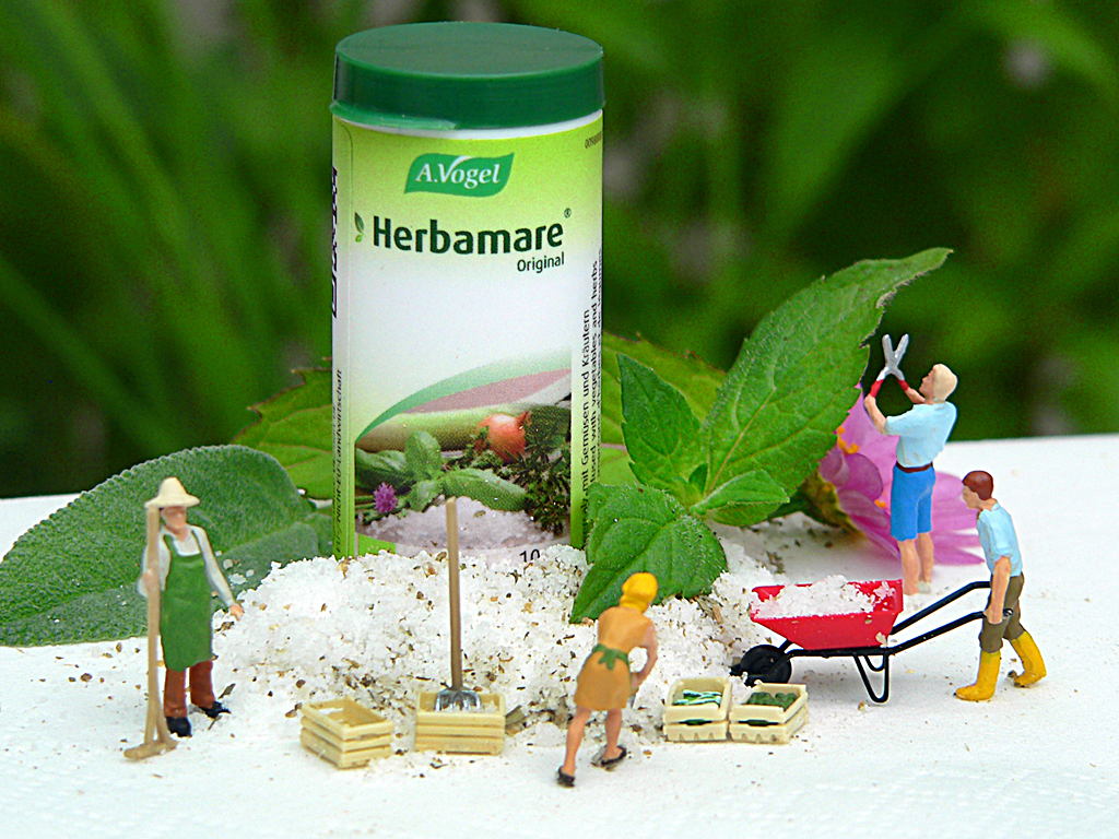 Herbamare 176 2013